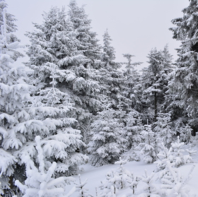 Krása zimního Klínovce