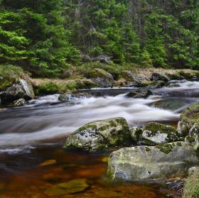 Voda živá
