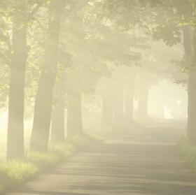 Šonovské svítání