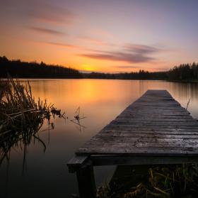 Podvečer na Olešském rybníku