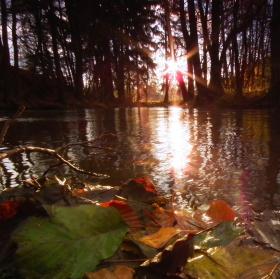 Podzim u Tiché Orlice