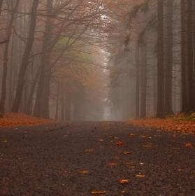 Podzimní  ticho