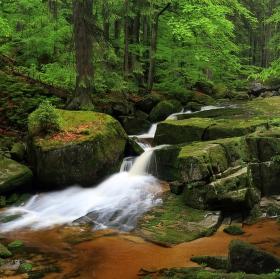 Údolí Jedlového potoka