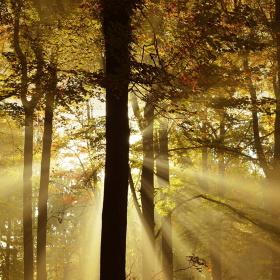 Když se Slunce ukrývá
