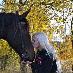 Kůň, člověk - podzim