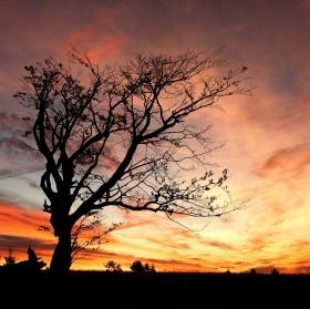Podzimní východ slunce na Šumavě