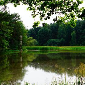 Komárovský rybník