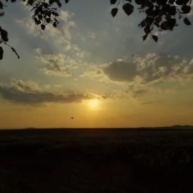 Za sluncem...