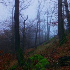 Mlha pod Babím lomem 2