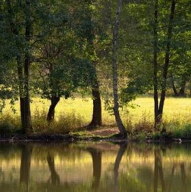 U rybníka