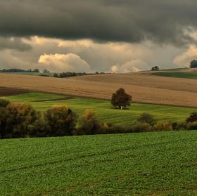 Jesenné štefanovské pole