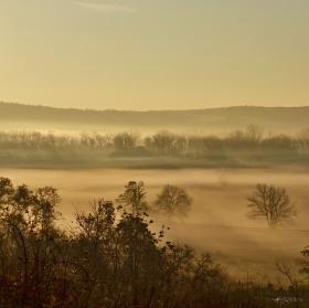 Mlha předemnou .....