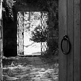 Dveře ...