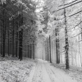 Andělé a démoni zimy