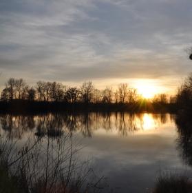 Rybník, západ slunce, stromy