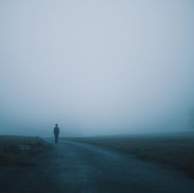 V mlze