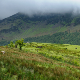 Lake District na jaře