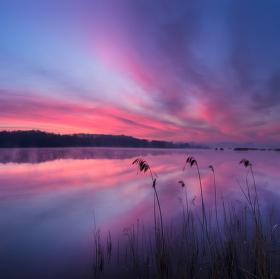 Ráno na Novozámeckém rybníku