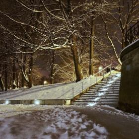 Večer v zimním parku