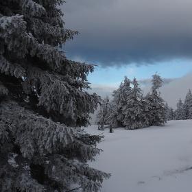 V letošní zimě je o tyto záběry nouze
