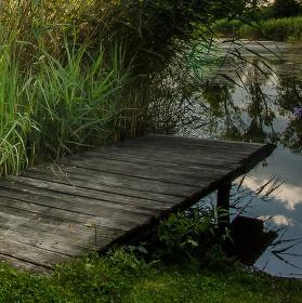 Molo u rybníka