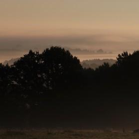 Ráno v Pošumaví