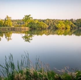 Trpišovský nový rybník