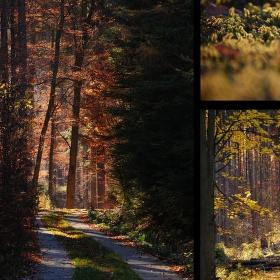 Slabost pro podzim