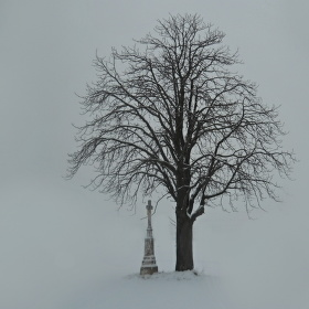 mlha,kterou by se dalo krájet