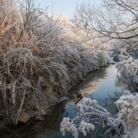 krásné ráno v divoké Kyjovce