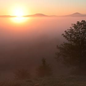 Letní ráno
