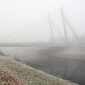 Mlhavé siluety