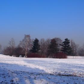 Sníh a mráz - zkrášlí přírodu