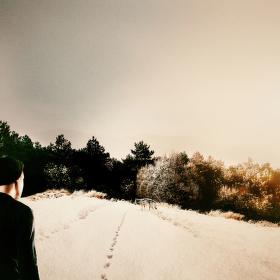 -tracks-