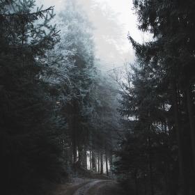 Cesta do duše