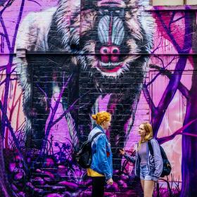 Melbourne Graffiti II.