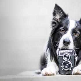 Fotograf nebo model?