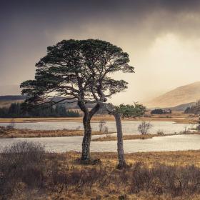 Loch Tulla | Highlands