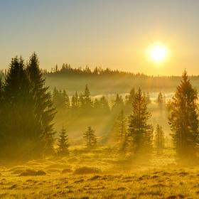 Šumava - Zlaté ráno na Knížecích Pláních