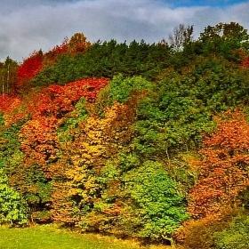 Takhle u nás přichází podzim
