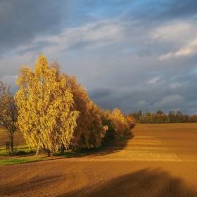 zlatý podzim...