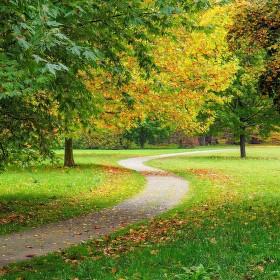 Podzim ...