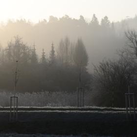 Ráno v okolí Jehnic