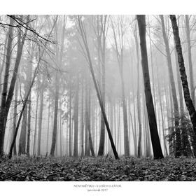 V lesích u Zátok