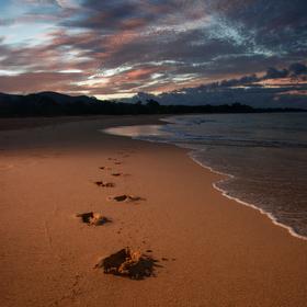 Makena Beach/Maui po ránu