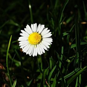 Jaro už je tu