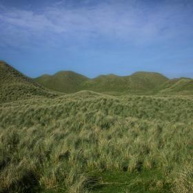 Písečné duny porostlé travou na severu Skotska