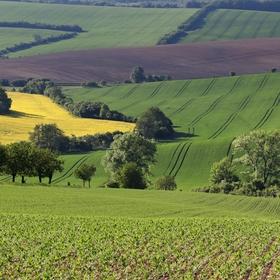 Krajina nad Kunkovicemi