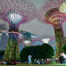 Zahrada budoucnosti