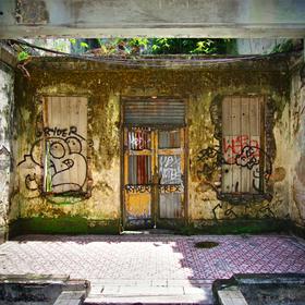 Door to Jungle